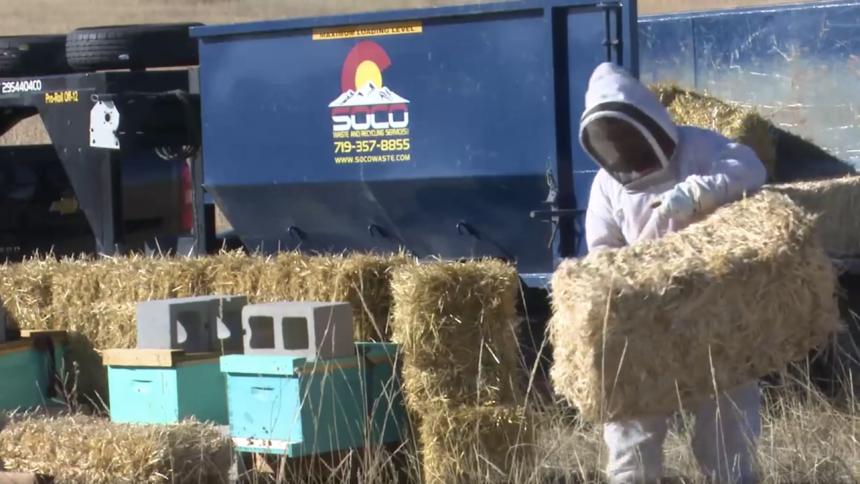 bee keeper hay winter