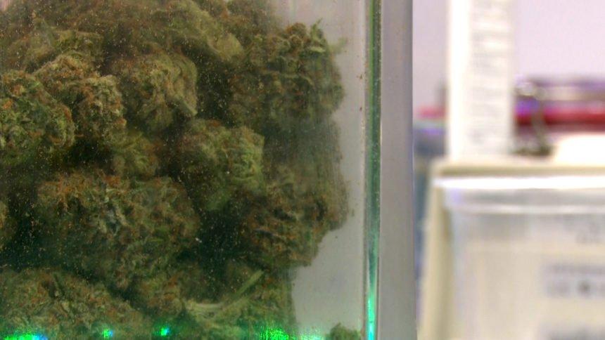 marijuana weed pot dispensary generic