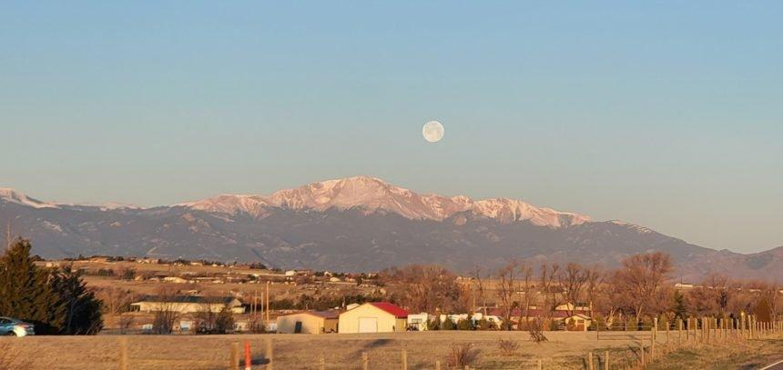 Amy Isaacson pink moon