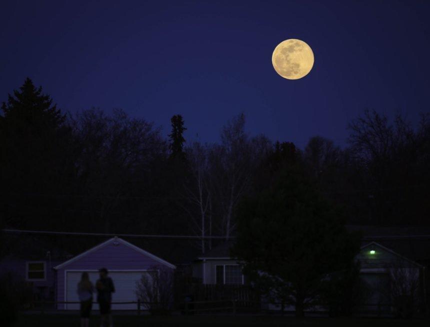 Sandra Loux pink moon