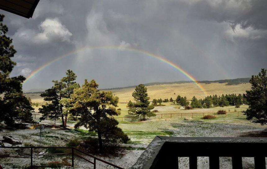 rainbow Ellie Thompson