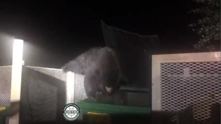 jefferson county bear dumpster