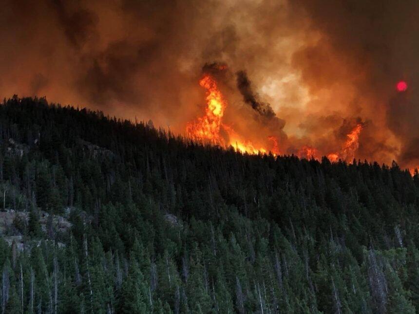 Cameron Peak Fire image