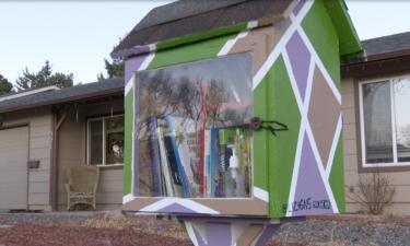 'Little library' in Colorado Springs neighborhood