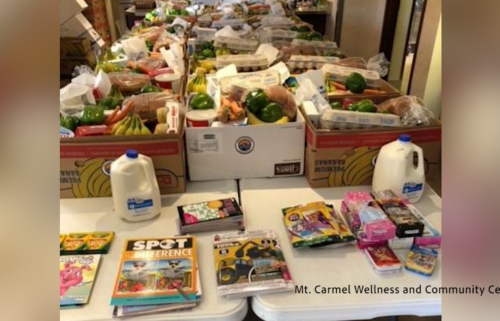 Mt. Carmel Wellness and Community Center food boxes