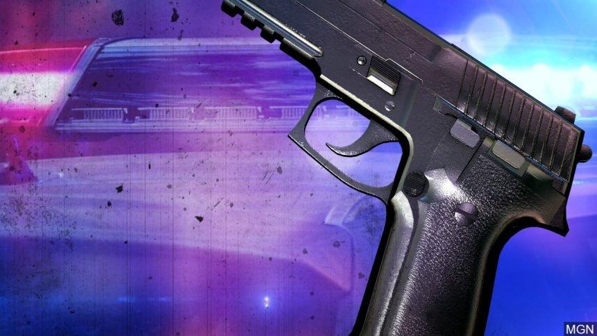 Gun_Police MGN