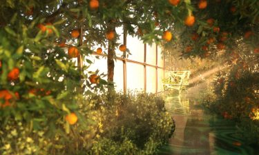 """The G Train will have a garden on board that allows passengers to """"explore different atmospheres each time."""""""