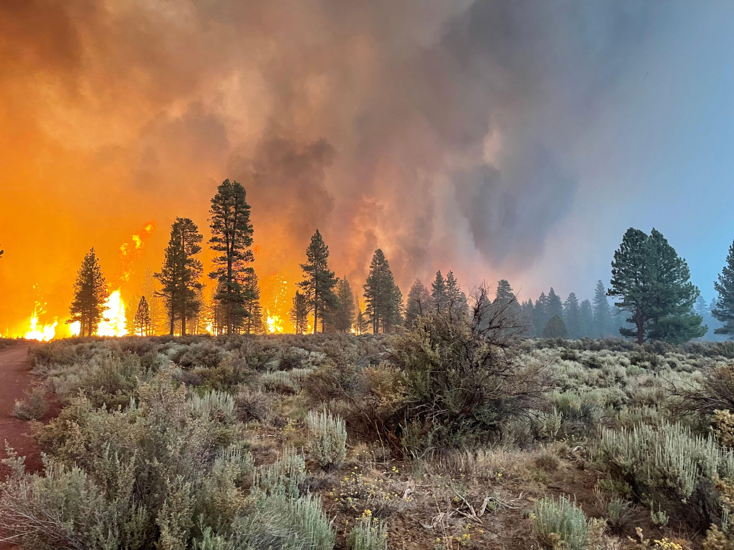 BLY, OREGON - JULY 12: In this handout provided by the USDA Forest Service, the Bootleg Fire burns on July 12, 2021 in Bly, Oregon. The Bootleg Fire has has spread over 212,377 acres, making it the largest among the dozens of blazes burning in the western U.S. fueled by record temperatures and drought.  (Photo by USDA Forest Service via Getty Images)